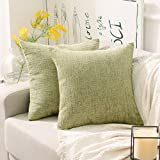 "HOME BRILLIANT Cushion Cover with Zipper for Bed Home Decor Striped Supersoft Chenille Velvet Plush Decorative Throw Pillow,2 Packs 18""x18"" (45cm), Fresh Grass Green"