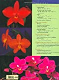 Understanding Orchids: An Uncomplicated Guide to