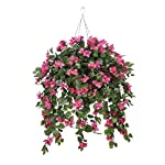 House-of-Silk-Flowers-Artificial-Mini-Pink-Bougainvillea-in-Square-Hanging-Basket