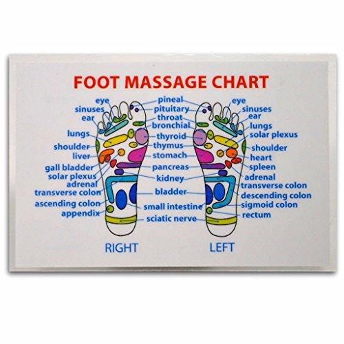 Foot Massage Reflexology Wallet Size Reference Card Chart Pocket Acupressure Health Massage Tools - Foot Reflexology Card