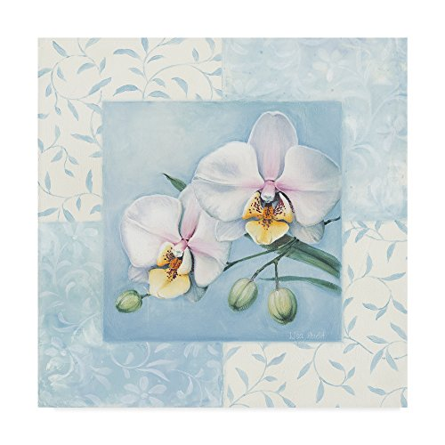 Orchid 2 by Lisa Audit, 35x35-Inch