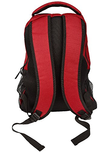 NFL Team Logo Action Backpack