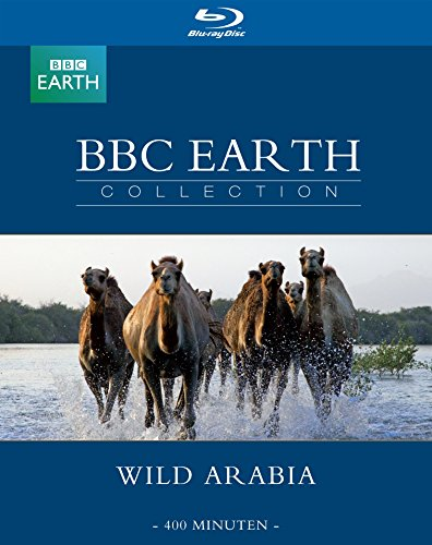 Best Wild arabia products