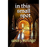 In This Small Spot (English Edition)