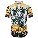 Mens Shirts,Han Shi Fashion Casual Hawaiian Beach Print Sports Short Sleeve Tees Blouse (L, Multicolor)