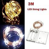 Warm White/Pure White 3M 30LED Copper Wire LED String Lights Lamp 5V.