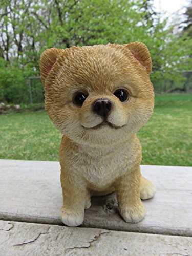 Pomeranian Puppy Dog Figurine Sitting