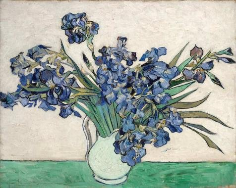 [Oil Painting 'Vincent Van Gogh-Irises,1889', 18 x 23 inch / 46 x 57 cm , on High Definition HD canvas prints is for Gifts And Bed Room, Garage And Living Room Decoration, familywall] (Hispanic Halloween Costumes)