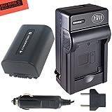 NP-FV50 Battery And Battery Charger for Sony DCR-SX44 DCR-SX45 HDR-PJ200 HDR-PJ230 HDR-PJ380 HDR-PJ430V HDR-PJ650V HDR-PV790V HDR-TD30V Handycam Camcorder + More!!