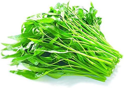 Aquatica Organic Vegetable 30G Water Planting product image