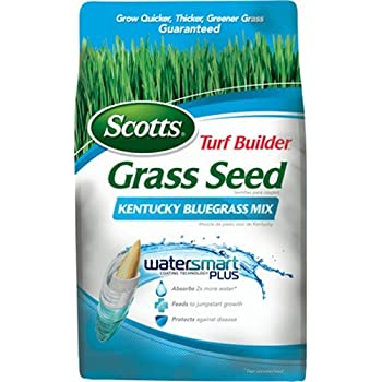 Scotts Turf Builder Grass Seed - Kentucky Bluegrass Mix, 3-Pound (Not Sold in Louisiana)