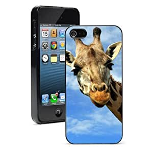 For iPhone 4 4S Hard Case Cover Curious GIraffe