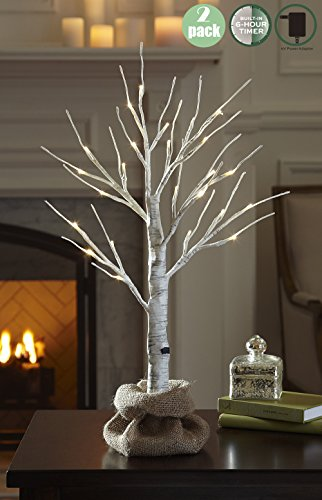 LOFTPLUS LED Birch Tree Hand-Painted Bonsai String Light 24 LED for Indoor Use Warm White Lights Dual-Power Design Battery or Power Adapter Operated Burlap Sack Included 24in Tall - 2Pack (Tree Wire Led)