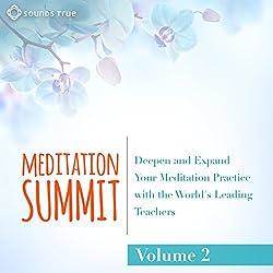 The Meditation Summit: Volume 2