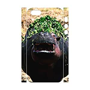 diy 3D Bumper Plastic Case Of Lion customized case for iphone 4/4s