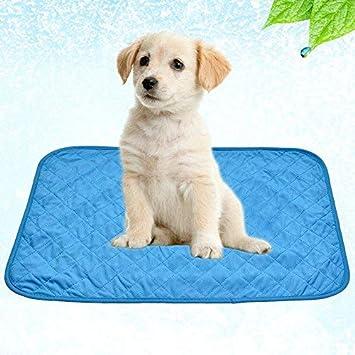 su-luoyu Alfombra de Enfriamiento para Mascotas Práctica y Plegable Manta Refrescante Alfombrilla de Refrigeración en Azul (L): Amazon.es: Productos para ...