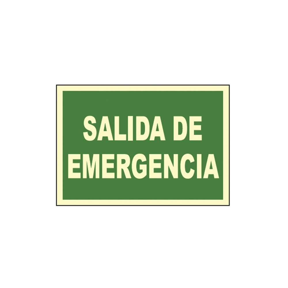 CARTEL SEÑAL SALIDA DE EMERGENCIA 30X21CM: Amazon.es ...