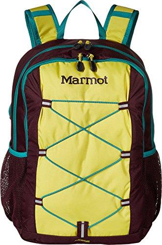 Marmot Arbor