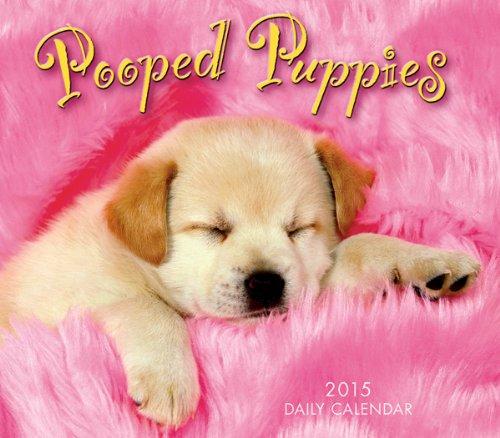 Pooped Puppies 2015 Boxed Calendar (Desk Calendar Pad Puppies)