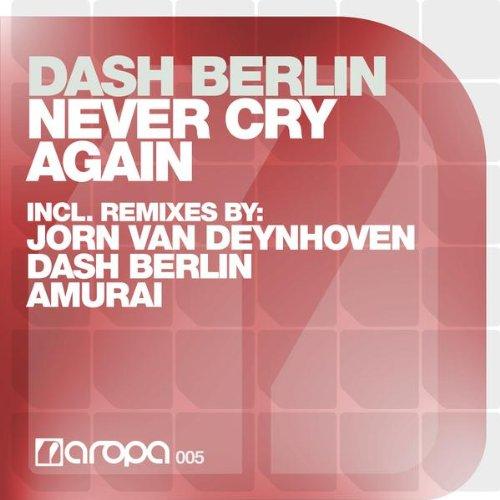 Never Cry Again (Original Vocal Mix)