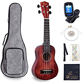 WINZZ 21 Inches Soprano Ukulele Vintage Hawaiian with Bag, Tuner, Strap, Extra Strings, Fingerboard Sticker, Red