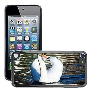 Etui Housse Coque de Protection Cover Rigide pour // M00108744 Cisne del pájaro de agua de la charca // Apple ipod Touch 5 5G 5th