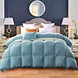 Blue Full Duvet Insert Queen Size Natural White Goose Down Comforter 100% Cotton Shell 55oz 800FP 600TC Hypoallergenic Box Stitched Protects Against Dust Mites and Allergens by MRNIU (Queen)
