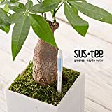 Sustee Aquameter Set of 2, Plant Moisture