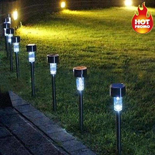Landscape Lights With Speakers in Florida - 9