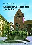Regensburger Brunnen und Platze : Geschichte, Funktion und Ikonographie, Paulus, Helmut-Eberhard, 3795411580