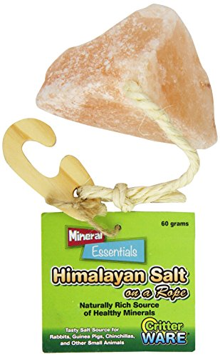 (Ware Manufacturing Himalayan Salt On A Rope Small Pet Chew Treat)