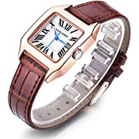 Women Wrist Watch Ladies Waterproof Brown Leather Strap Watches Dress Quartz Watch