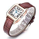 Women Wrist Watch Ladies Waterproof Brown Leather Strap Watches Dress Quartz Watch