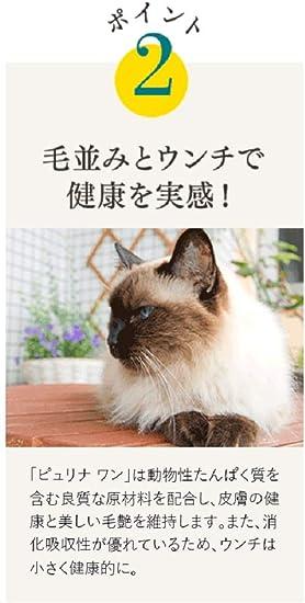 ピュリナ ワン 猫
