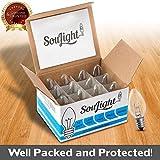 Salt Rock Lamp Bulb 10 Pack + 2 Free 15 Watt