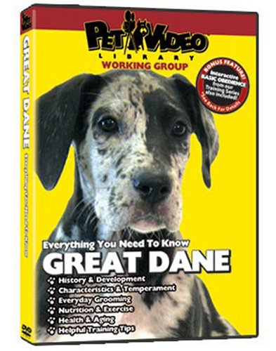 great-dane-dvd-includes-dog-puppy-training-video