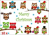 'FUNNY CHRISTMAS OWLS': Pack of 12 christmas postcards with funny owls - best for bird-lovers, families with children and postcrossing