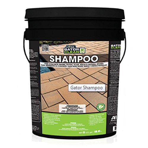 Alliance Gator Clean Shampoo for Pavers & Patios 5 Gal