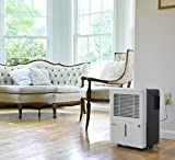 Ivation 30 Pint Energy Star Dehumidifier - For