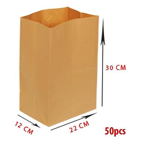 asiam Impex – Sarl Bolsa de Papel – sin Asas – 22 x 12 x 30 – 70 gsm – 50 Piezas – Papel de estraza marrón – no Imprimé – % 100 reciclable