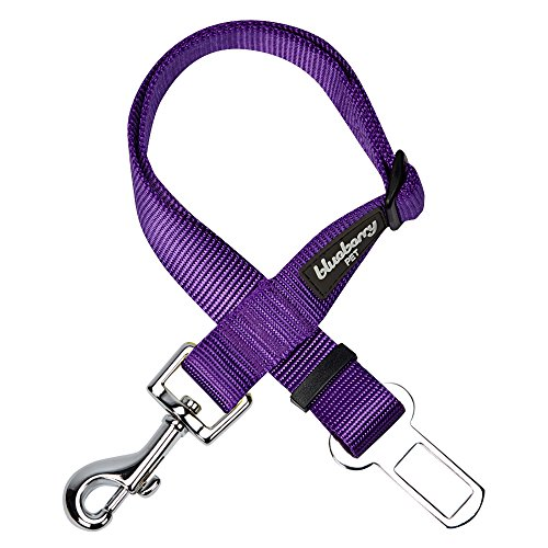 Blueberry Pet 12 Colors Classic Dog Seat Belt Tether for Dogs Cats, Dark Orchid, Durable Safety Car Vehicle Seatbelts Leads Use with Harness
