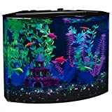 GloFish 29045 Aquarium Kit with Blue LED light, 5-Gallon