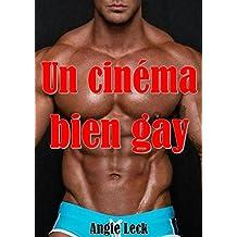 Un cinéma bien gay (French Edition)
