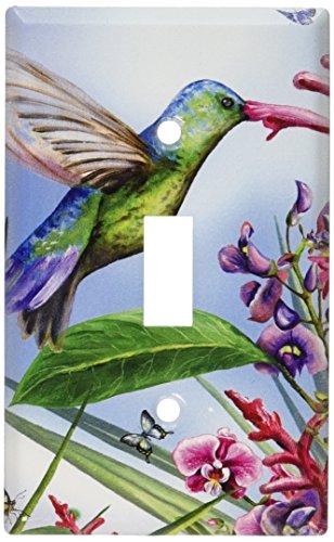 Art Plates - Green Hummingbird Switch Plate - Single Toggle