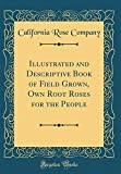 Amazon / Forgotten Books: Illustrated and Descriptive Book of Field Grown, Own Root Roses for the People Classic Reprint (California Rose Company)