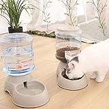 Ito Rocky Pet Feeding Solution Automatic Cat