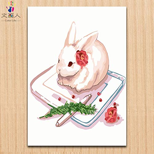 40x50 with frame 7132 rabbit 4 KYKDY Small Write Rabbit Painting Pictures colorings by Numbers with Paint Kits Animals Numbers Painting by Numbers on Canvas for,7132 Rabbit 4,40x50 with Frame