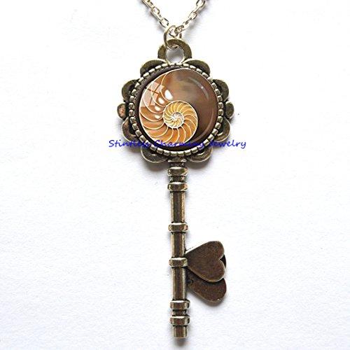 Fibonacci Spiral Pendant Chambered Nautilus Key Necklace Sacred Geometry Jewelry Brown Yellow Shell Key Necklace Shell Jewelry Fibonacci (Genuine Beach Glass Necklace)