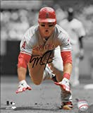 Mike Trout signed autographed 8 x 10 photo Los Angeles Angels COA