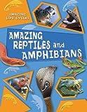 Amazing Reptiles and Amphibians (Amazing Life Cycles)